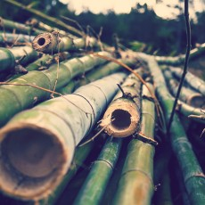 Natural-Building-Bamboo
