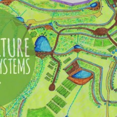 Permaculture-livestock-systems