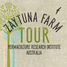 Winter Zaytuna Farm Tour