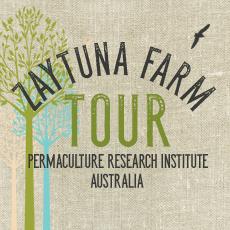 Winter Zaytuna Farm Tour