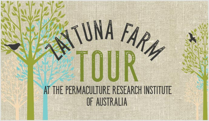 Zaytuna-Farm-Tour