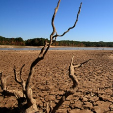 Millions in Southern Africa at Risk of Food Insecurity