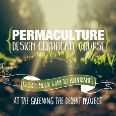 Permaculture-Design-Certificate-Course-Greening-The-Desert-2