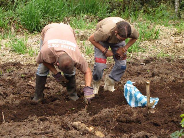 Volunteering in Ecuador, Photo by Emma Gallagher