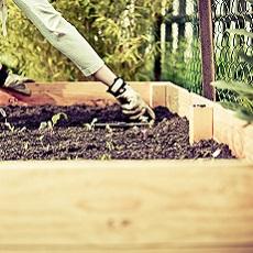Wellbeing Gardening – Gardening for the Body, Mind & Spirit