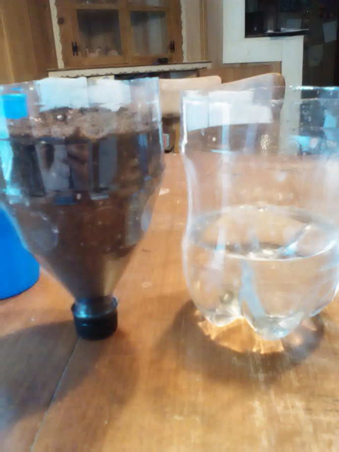 Then I filled the top portion of the bottle with potting soil and planted my seedling. I left the cap in place for this step to prevent the soil from pouring back out.  I also filled the bottom half of the bottle ¼ of the way with water.