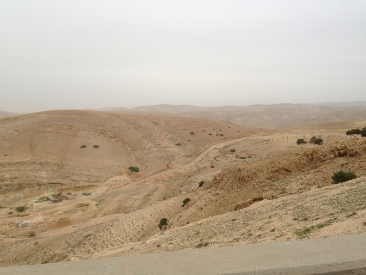 Overgrazed land between Amman and Jawfa.