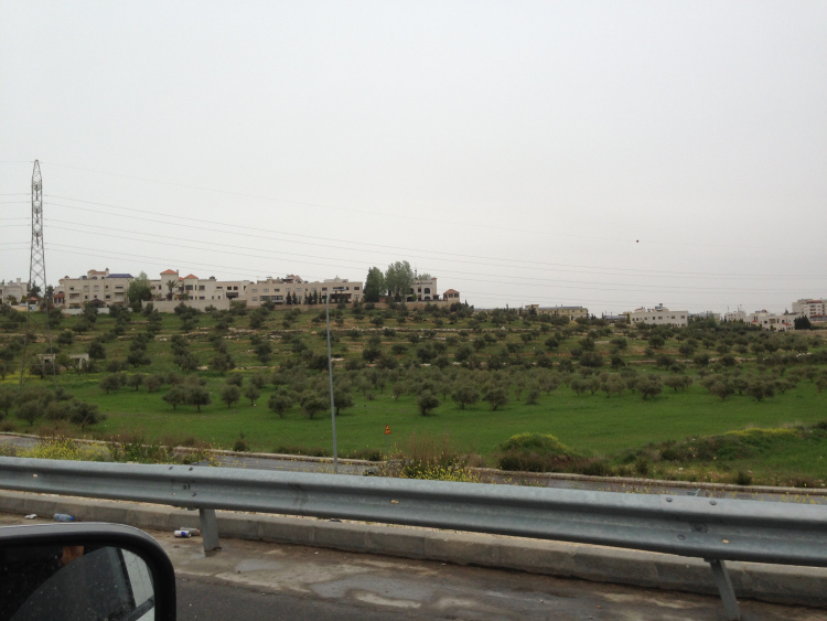 The countryside near Amman.