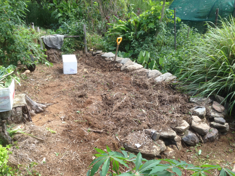 Starting to prepare the beds for the garlic.