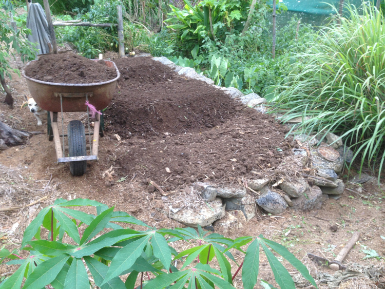 Adding the last of the five wheelbarrows of compost.