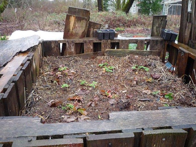 Compost & Palettes (Courtesy of nancybeetoo)