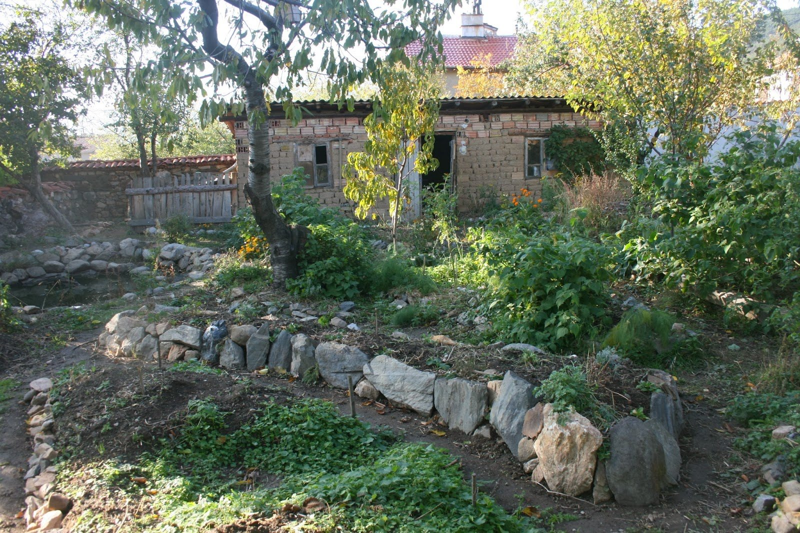 Chai Guild - Built and planted out in November 2012.