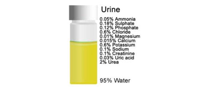 urine-Container