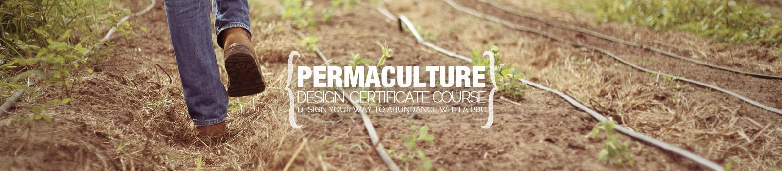 Permaculture Research Institute headline.