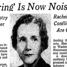 Silent-Spring-Headline