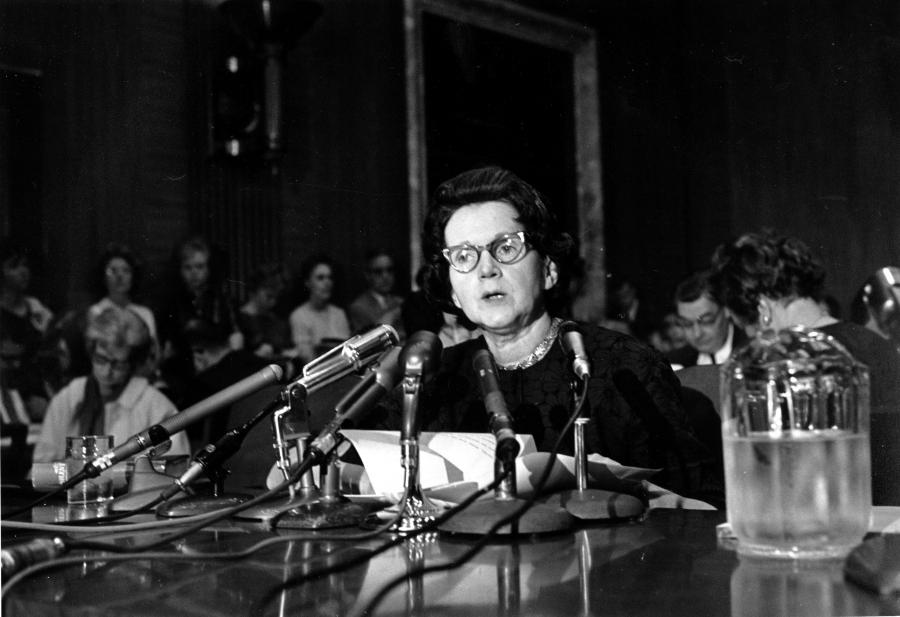 Rachel Carson testifying before the Senate Government Operations subcommittee studying pesticide spraying (June 4, 1963).
