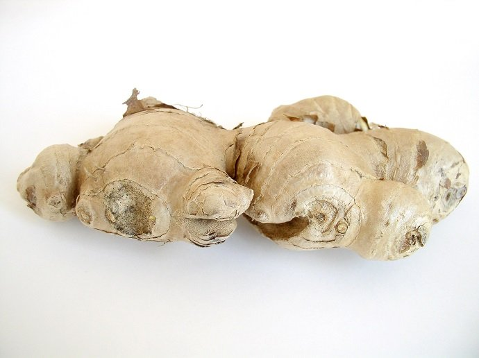 how to use ginger root for nausea