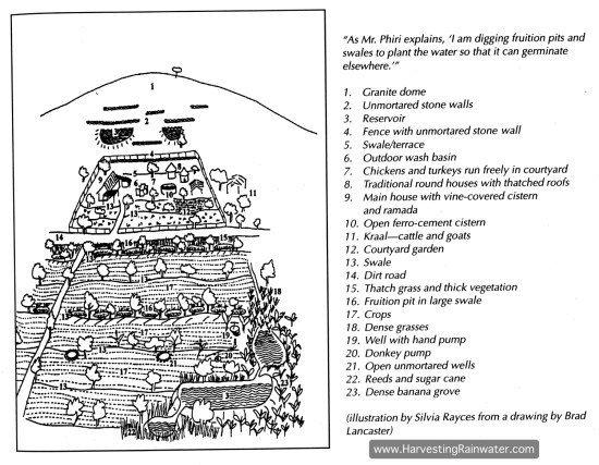 Figure 1. Map of the Phiri family farm, drawn in 1996.