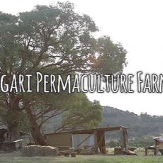 Agari Permaculture Farm