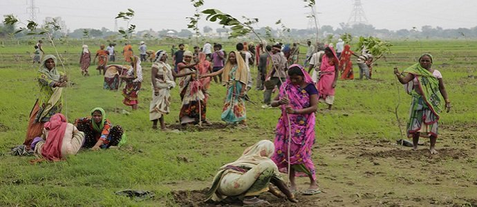 Photo of An Attempt to Set a New Guinness Record by Planting 50 Million Trees in One Day