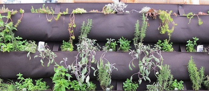 20 garden hacks for the quirky and pragmatic permaculturalist - Garden Hacks