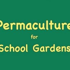 Permaculture for School Gardens 01 - feat