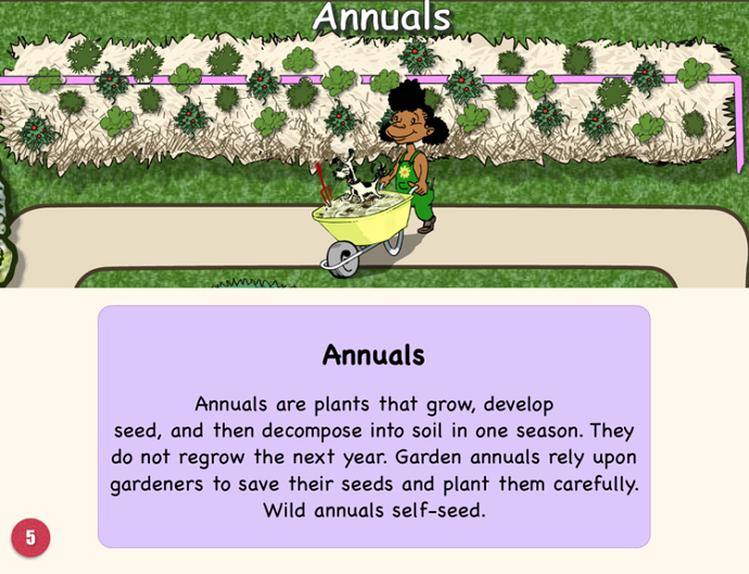 Permaculture for School Gardens 03