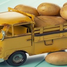 A truck with potatoes