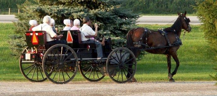 Image Attribution: Amish Family: Kiwi Dea Pi BY CC 3.0