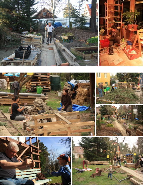 Urban Permaculture Transformation 05
