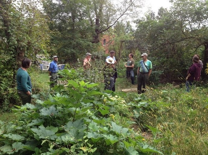 Urban Permaculture Transformation in Michigan 14
