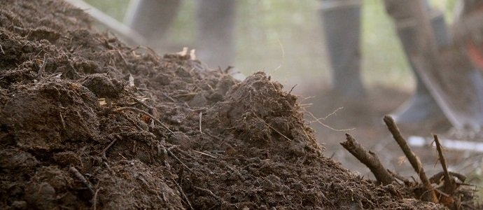 Confusing your Compost with your Mulch feat