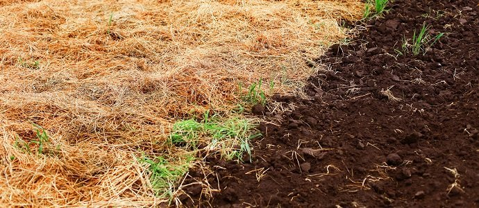 Soil nutrients the permaculture research institute for Soil nutrients