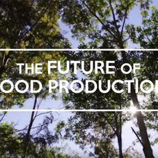 The-future-of-food-production