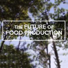 The Future of Food Production – Short Documentary by Bayley Pilling