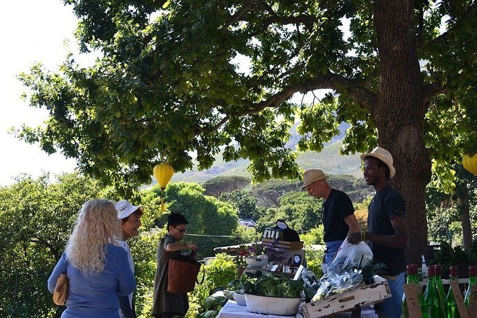 Image Attribution: Oranjezicht City Farm Market Day: Lucinda Jolly Public Domain