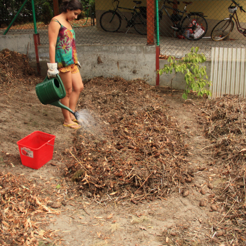 Urban Permaculture Transformation 21