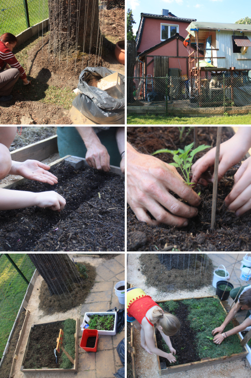 Urban Permaculture Transformation 35