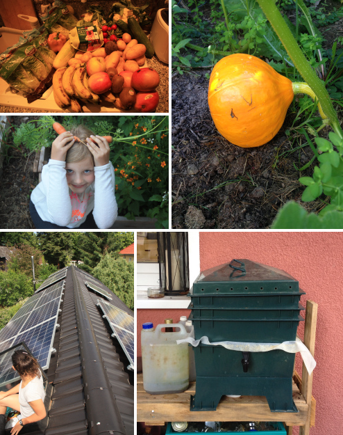 Urban Permaculture Transformation 37