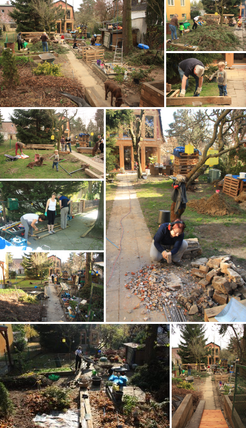 Urban Permaculture Transformation 42