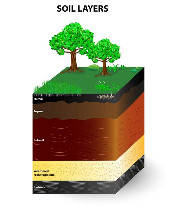 The soil profile the permaculture research institute for Soil 5 letters