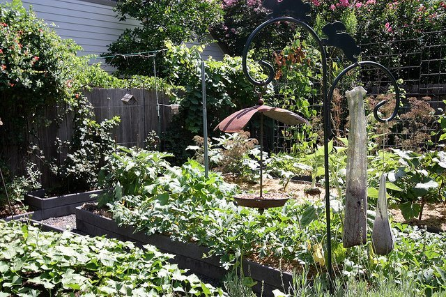 Urban Harvest Tour – Rotation Beds (Courtesy of Jonti Bolles)