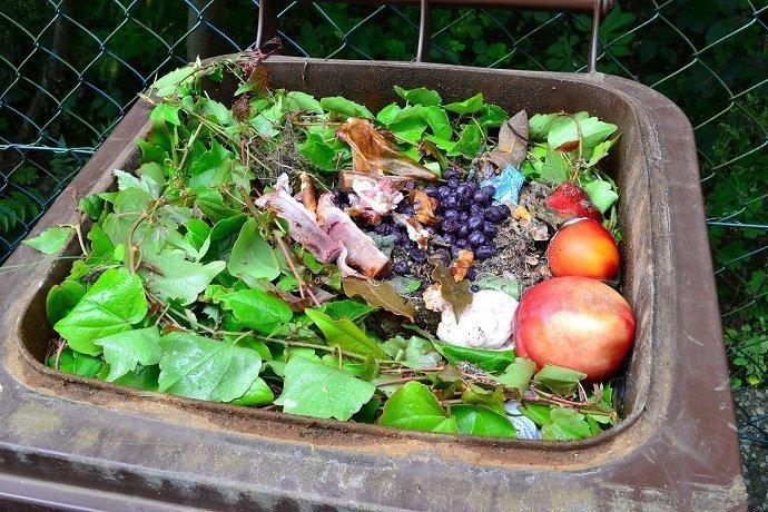 Household bio organic food waste