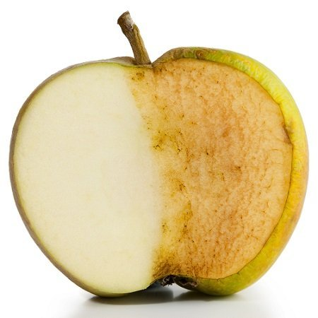 Apple sliced in half. Half fresh and half decayed on white background