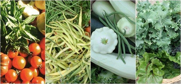 Polyculture Produce