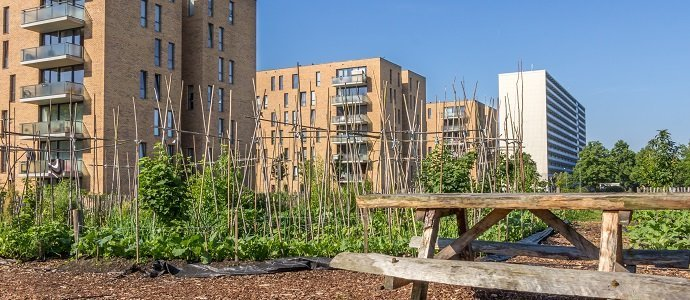 Photo of The Problem with Urban Agriculture? – A Fact Based Rebuttal to a Landscape Architecture's Misconceptions