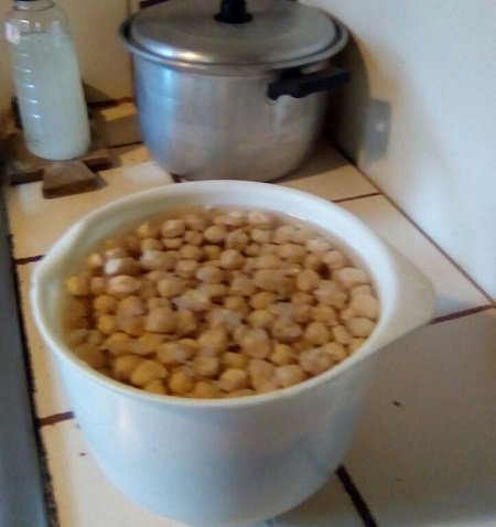 Soaking chickpeas for lunch, saving the water for the garden. Photo Credit: Jonathon Engels