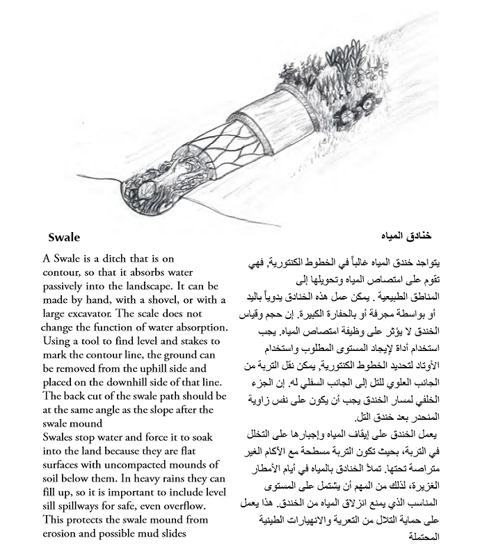 The Permaculture Student 1 eBook English-Arabic 04