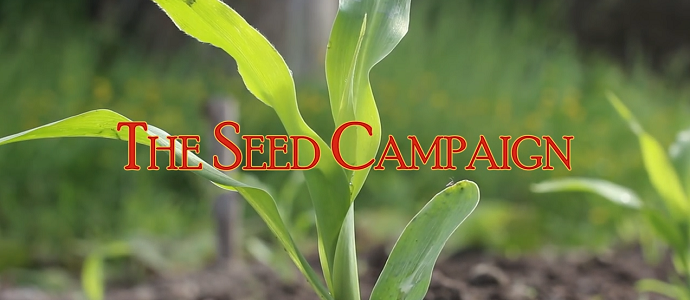 The Seed Campaign feat