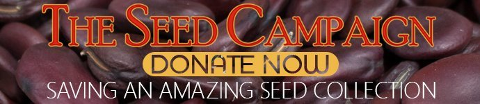 community-fundraisingthe-seed-campaign